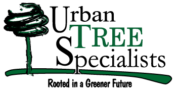 Urban Tree Specialists